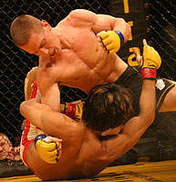 MMA, the Fastest Growing Sport in America