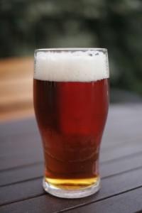 Essex Beer Festival Diary
