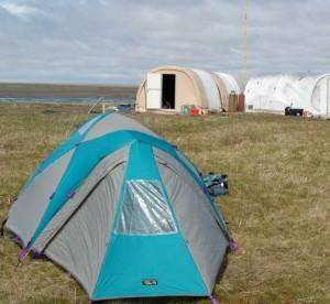 Camping in Essex