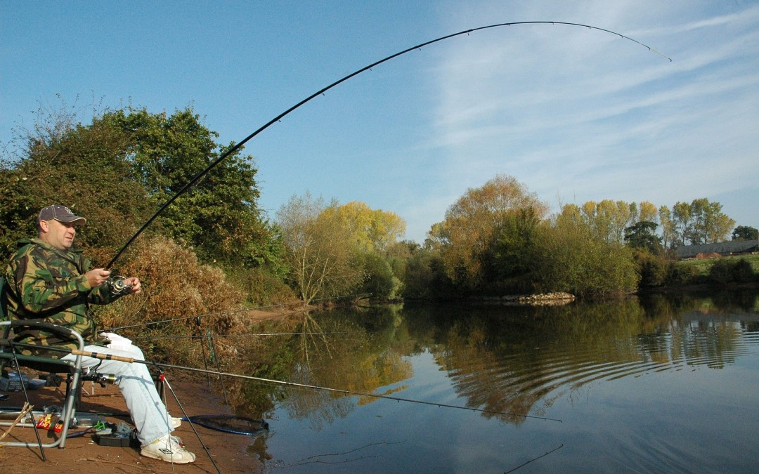 Best Carp Fishing In Essex Essex Portal