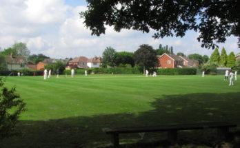 Stock village cricket